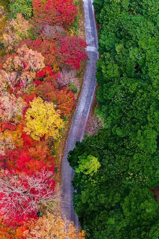 3. 여수시, 미평 산림욕장 '무장애 나눔길 조성' 우수상.jpg