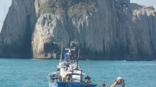 백도 해상 불법 영업 낚싯배 2척 적발